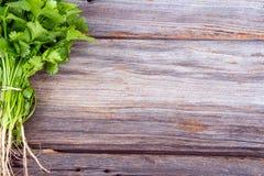 Φρέσκια ανθοδέσμη κορίανδρου ή cilantro στοκ εικόνες με δικαίωμα ελεύθερης χρήσης