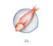 Φρέσκια απεικόνιση ψαριών Συρμένο χέρι watercolor στο άσπρο υπόβαθρο Στοκ Εικόνα