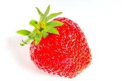 Φρέσκια απομονωμένη φράουλα στο άσπρο υπόβαθρο Στοκ φωτογραφία με δικαίωμα ελεύθερης χρήσης
