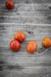 Φρέσκια βιο ντομάτα συγκομιδών παιδιών Στοκ Φωτογραφία