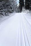 Φρέσκια διαδρομή για ανώμαλο να κάνει σκι Στοκ Εικόνες