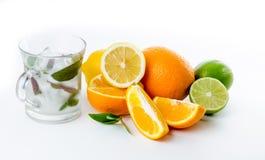 φρέσκια λεμονάδα Φρούτα Πορτοκαλής ασβέστης λεμονιών και πράσινη μέντα Στοκ φωτογραφία με δικαίωμα ελεύθερης χρήσης