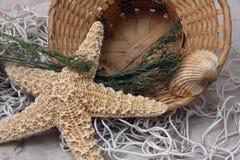 Φρέσκια ευγενής θαλάσσια ακόμα ζωή θερέτρου με τον αστερία, καλάθι, αυτή Στοκ Εικόνες