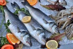 φρέσκια θάλασσα ψαριών Στοκ Φωτογραφίες
