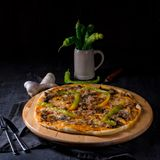 Φρέσκια και νόστιμη Peperoni πίτσα Στοκ Εικόνες