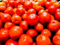 Φρέσκια κατεύθυνση ντοματών κόκκινου χρώματος από το αγρόκτημα Στοκ φωτογραφίες με δικαίωμα ελεύθερης χρήσης