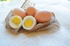 Φρέσκια κινηματογράφηση σε πρώτο πλάνο αυγών στο άσπρο υπόβαθρο στοκ εικόνα