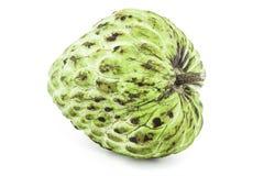 Φρέσκια κρέμα Apple ή ώριμα φρούτα Annona της Apple ζάχαρης, sweetsop απομονωμένος στο άσπρο υπόβαθρο Στοκ Εικόνα
