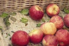 Φρέσκια κόκκινη σύσταση μήλων Φρέσκο μήλο που βρίσκεται στο μετρητή ÏƒÏ στοκ φωτογραφία με δικαίωμα ελεύθερης χρήσης