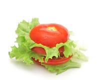 Φρέσκια ντομάτα με τη φρέσκια σαλάτα μαρουλιών Στοκ φωτογραφίες με δικαίωμα ελεύθερης χρήσης