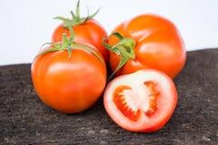 φρέσκια ντομάτα Στοκ Εικόνα