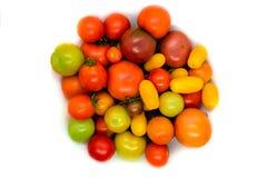 Φρέσκια, οικολογική και ζωηρόχρωμη διαφορετική ντομάτα τύπων που απομονώνεται επάνω Στοκ φωτογραφία με δικαίωμα ελεύθερης χρήσης