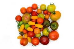 Φρέσκια, οικολογική και ζωηρόχρωμη διαφορετική ντομάτα τύπων που απομονώνεται επάνω Στοκ Φωτογραφία