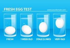 Φρέσκια δοκιμή αυγών Στοκ εικόνες με δικαίωμα ελεύθερης χρήσης