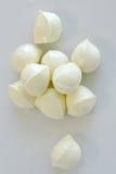 φρέσκια ομάδα τυριών bocconcini σφα& στοκ εικόνα