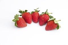 Φρέσκια ομάδα φραουλών 5 στοκ εικόνες με δικαίωμα ελεύθερης χρήσης