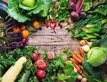 Φρέσκια οργανική αγορά πλαισίων λαχανικών κατατάξεων Στοκ εικόνα με δικαίωμα ελεύθερης χρήσης