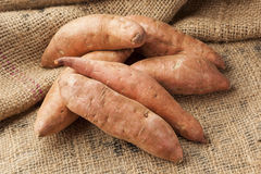 Φρέσκια οργανική πορτοκαλιά γλυκιά πατάτα Στοκ Φωτογραφίες