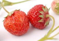φρέσκια οργανική φράουλα Στοκ Εικόνες
