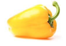 φρέσκια πάπρικα κίτρινη Στοκ Εικόνα