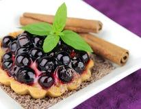 φρέσκια πίτα μούρων στοκ φωτογραφίες με δικαίωμα ελεύθερης χρήσης