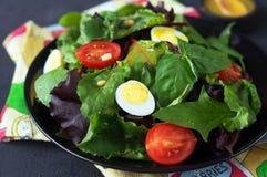 Φρέσκια πράσινη σαλάτα με τα καρύδια πεύκων ντοματών κερασιών και τα αυγά ορτυκιών Σάλτσα σαλάτας κατανάλωση υγιής ενάντια ως δολ Στοκ φωτογραφία με δικαίωμα ελεύθερης χρήσης