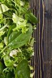 Φρέσκια πράσινη σαλάτα με το σπανάκι, το arugula και το μαρούλι Στοκ Φωτογραφία