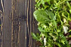 Φρέσκια πράσινη σαλάτα με το σπανάκι, το arugula και το μαρούλι Στοκ φωτογραφίες με δικαίωμα ελεύθερης χρήσης