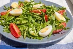 Φρέσκια πράσινη σαλάτα με το arugula, τις ντομάτες, τα αυγά και το αγγούρι Στοκ φωτογραφία με δικαίωμα ελεύθερης χρήσης