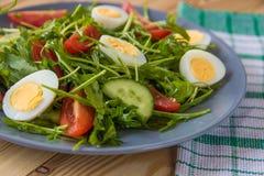 Φρέσκια πράσινη σαλάτα με το arugula, τις ντομάτες, τα αυγά και το αγγούρι Στοκ εικόνες με δικαίωμα ελεύθερης χρήσης