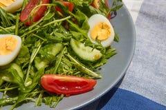 Φρέσκια πράσινη σαλάτα με το arugula, τις ντομάτες, τα αυγά και το αγγούρι Στοκ εικόνα με δικαίωμα ελεύθερης χρήσης