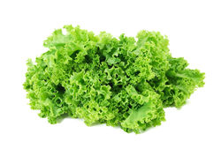 φρέσκια πράσινη σαλάτα Στοκ εικόνες με δικαίωμα ελεύθερης χρήσης