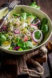 Φρέσκια πράσινη σαλάτα με το αυγό μαρουλιού, arugula και ορτυκιών Στοκ Εικόνα