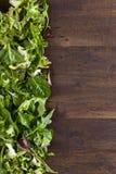 Φρέσκια πράσινη σαλάτα με το σπανάκι, το arugula και το μαρούλι Στοκ εικόνες με δικαίωμα ελεύθερης χρήσης