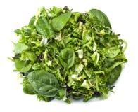 Φρέσκια πράσινη σαλάτα που απομονώνεται στο άσπρο υπόβαθρο Στοκ Εικόνες