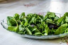Φρέσκια πράσινη σαλάτα πυραύλων με τα φύλλα και τις ελιές Arugula Rucola Στοκ Εικόνα