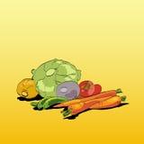 Φρέσκια πράσινη χορτοφάγος κουζίνα λαχανικών Στοκ Εικόνες