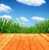 Φρέσκια πράσινη χλόη άνοιξη με το μπλε ουρανό και το ξύλινο υπόβαθρο πατωμάτων Στοκ εικόνες με δικαίωμα ελεύθερης χρήσης