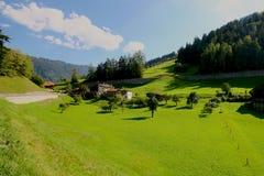 Φρέσκια πράσινη χλόη στο αλπικό λιβάδι που περιβάλλεται από τα βουνά. Στοκ Εικόνα
