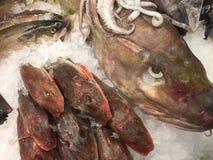 φρέσκια πώληση ψαριών Στοκ φωτογραφίες με δικαίωμα ελεύθερης χρήσης