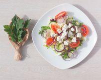 Φρέσκια σαλάτα άνοιξη με το αγγούρι, την ντομάτα, το τυρί και το arugula που απομονώνονται σε ένα άσπρο πιάτο Στοκ φωτογραφία με δικαίωμα ελεύθερης χρήσης