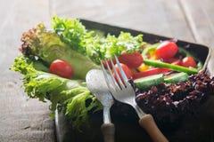 Φρέσκια σαλάτα κινηματογραφήσεων σε πρώτο πλάνο, ντομάτα, αγγούρι, πιπέρι κουδουνιών Στοκ Φωτογραφίες