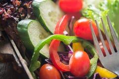 Φρέσκια σαλάτα κινηματογραφήσεων σε πρώτο πλάνο, ντομάτα, αγγούρι, πιπέρι κουδουνιών Στοκ εικόνες με δικαίωμα ελεύθερης χρήσης