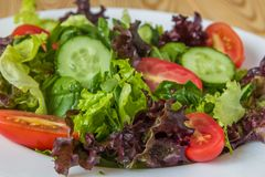 Φρέσκια σαλάτα με τα μικτά πράσινα, την ντομάτα κερασιών και το αγγούρι Στοκ Εικόνες