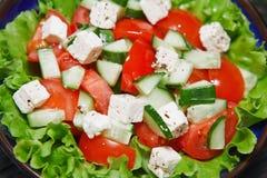 Φρέσκια σαλάτα με την ντομάτα και το αγγούρι. πράσινος Στοκ εικόνες με δικαίωμα ελεύθερης χρήσης