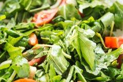 Φρέσκια σαλάτα με το arugula και την ντομάτα Στοκ Φωτογραφία