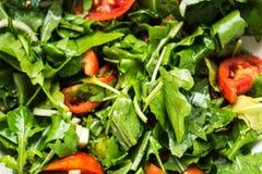 Φρέσκια σαλάτα με το arugula και την ντομάτα Στοκ φωτογραφίες με δικαίωμα ελεύθερης χρήσης