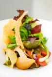 Φρέσκια σαλάτα με το conchiglie rigate Στοκ Εικόνα