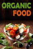 Φρέσκια σαλάτα ντοματών, τυριών και σπανακιού στο ξύλινο υπόβαθρο Υγιεινή διατροφή στοκ φωτογραφίες με δικαίωμα ελεύθερης χρήσης