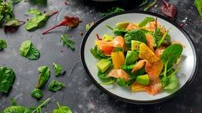 Φρέσκια σαλάτα σολομών με τα πορτοκαλιών και πράσινων λαχανικά αβοκάντο, Στοκ εικόνες με δικαίωμα ελεύθερης χρήσης